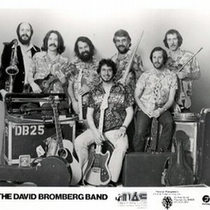 Image for 'David Bromberg Band'