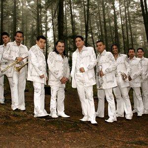 Bild für 'Banda Pequeños Musical'
