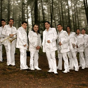 Image for 'Banda Pequeños Musical'