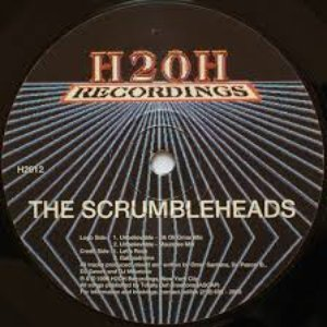 Image for 'The Scrumbleheads'