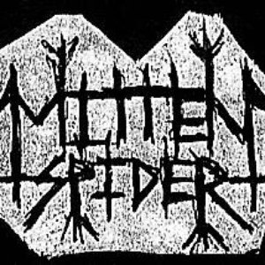 Image for 'Mitten Spider'
