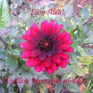 Image for 'Eion Alea'