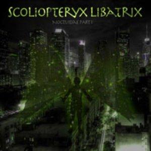 Image for 'Scoliopteryx Libatrix'