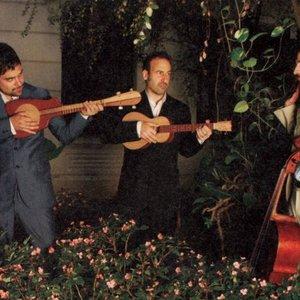 Image for 'Alvy, Nacho y Rubin'