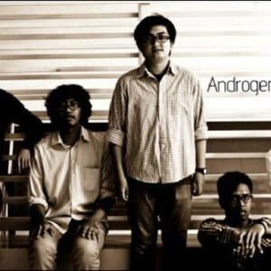 Image for 'Androgeniuses'