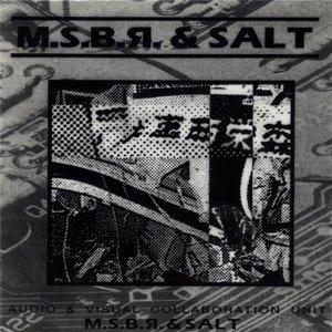 Bild für 'MSBR & Salt'