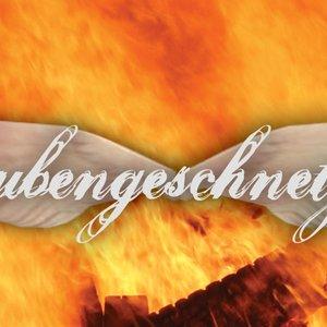 Image for 'SML&FPL aka Taubengeschnetzeltes'
