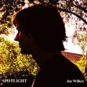 Bild för 'Joe Wilkes'