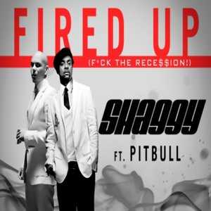 Image for 'Shaggy feat. Pitbull'