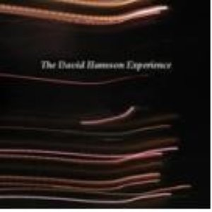 Image for 'The David Hansson Experience'