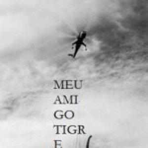 Image for 'Meu Amigo Tigre'