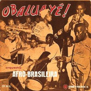 Image for 'Orquestra Afro Brasileira'