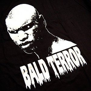 Image for 'Bald Terror'