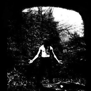 Image for 'Licht Erlischt...'