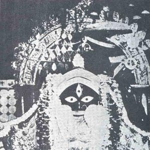 Bild für 'Wodwo'