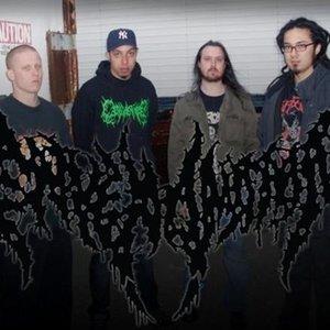 Image for 'Envenomation'