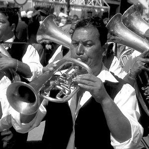 Image for 'Gypsy Groovz Orchestra Goes Tuttimundi'