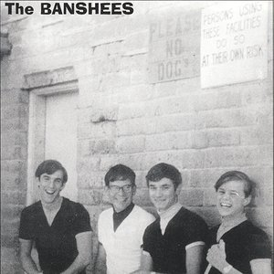 Image for 'Banshees'