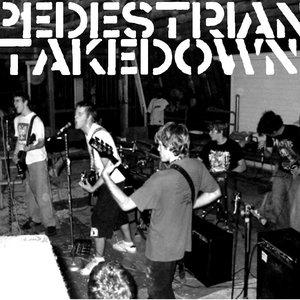 Image for 'pedestrian takedown'