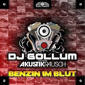 Immagine per 'DJ Gollum feat. Akustikrausch'