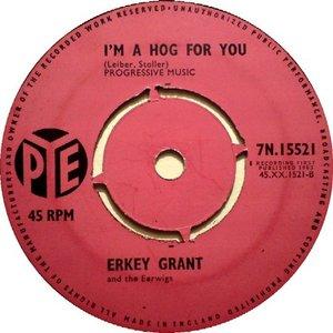 Image for 'Erkey Grant & The Eerwigs'