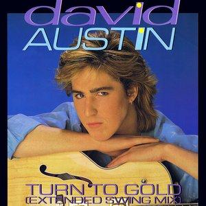 Image for 'David Austin'