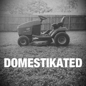 Image for 'Domestikated'