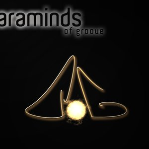 Image for 'Paraminds of Groove'