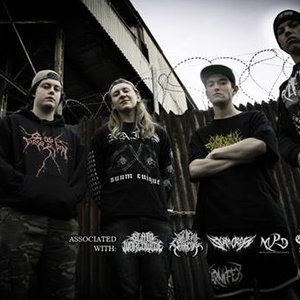 Image for 'Visions Of Disfigurement'