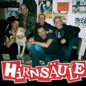 Image for 'Hirnsäule'