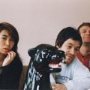 Image for '8 Doogymoto'