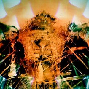 Bild för 'Mazes'