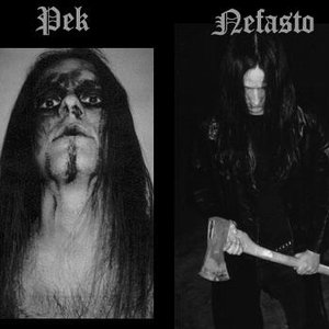 Image for 'pek'