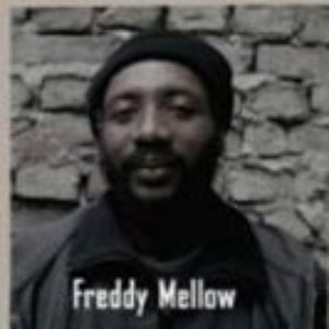 Image for 'Freddy Mellow'
