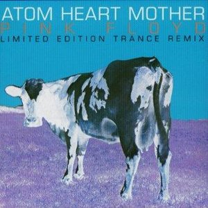 Image for 'Fuchsia Floyd Trance Remixes'