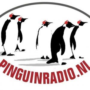 Image pour 'Pinguin Radio'