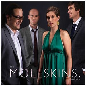 Image for 'The Moleskins'