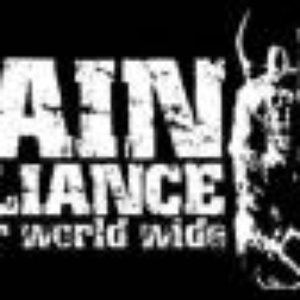 Image for 'Pain Alliance'