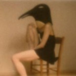 Image for 'PENGUIN CAFE ORCHESTRA -tribute-'