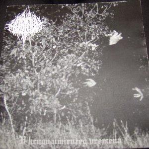 Image for 'Nostrum'