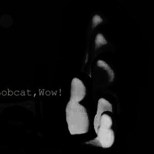 Bild für 'Bobcat, Wow!'