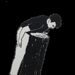 Bild für 'Shy Mirrors'