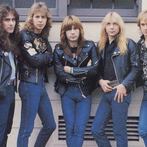 Immagine per 'Iron Maiden'