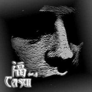 Image for 'Casui'