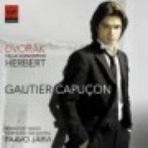 Image for 'Renaud Capuçon/Gautier Capuçon'