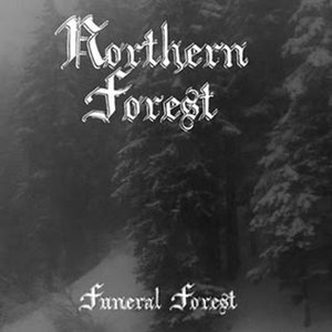 Image for 'Northern Forest'