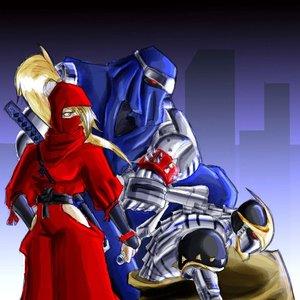 Image for 'The Ninja Warriors'
