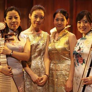 Image for 'The Silk String Quartet'