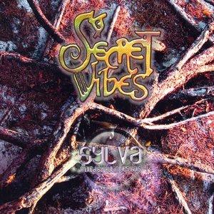 Image for 'Secret Vibes'