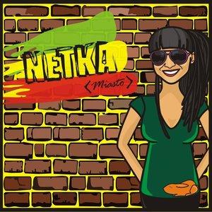 Bild för 'Netka'